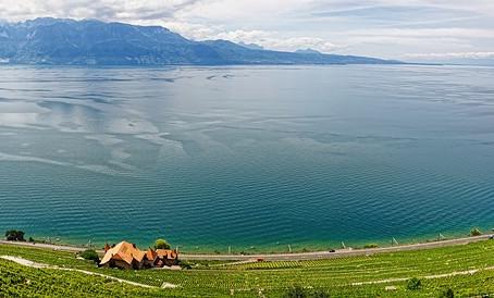 Vue d'ensemble des vents du lac Léman : vents généraux, d'orages, diurnes et nocturnes