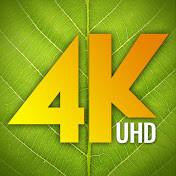 4K Drone Footage