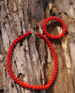 Red Coral ( Sea Bamboo)