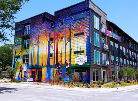 Stunning Finish in the Bishop Arts District