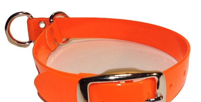 Neon Orange 1 inch wide dayglo nonslip dog collar