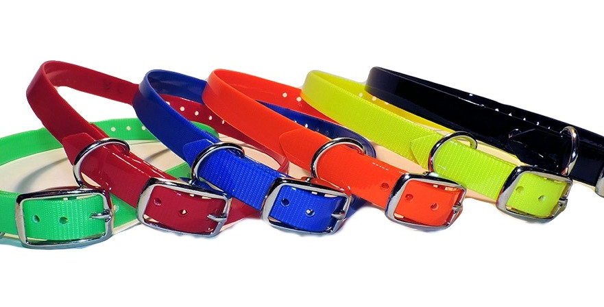 3/4 inch wide dayglo replacement collars for E collars and Garmin Collar