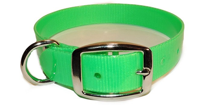 neon green 1 inch wide dayglo dog collar with Dee ring.