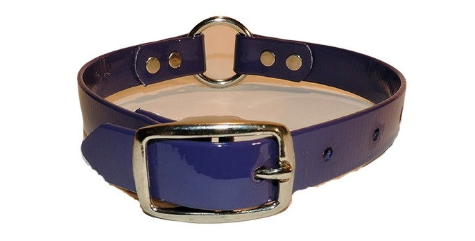 Neon purple dayglo 3/4 inch wide dog collar with center ring.
