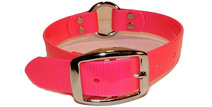 Neon Pink 1 inch dayglo dog collar with center ring.