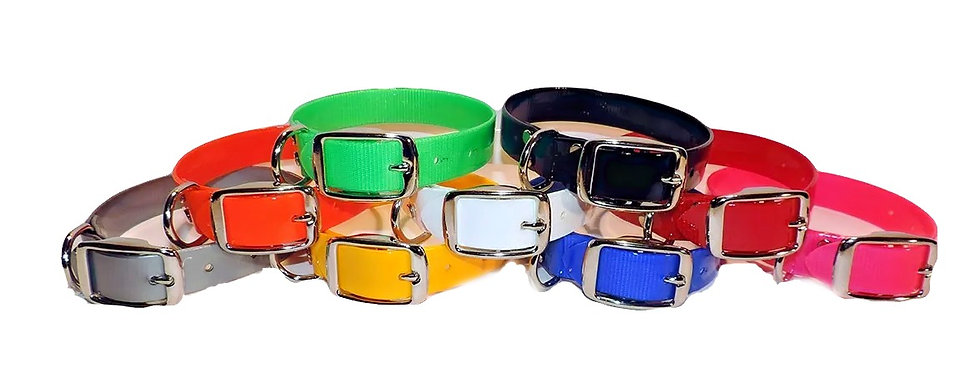 1 inch wide dayglo field trial collar set. Beagle regulation collars in gray orange green yellow white black blue red pink