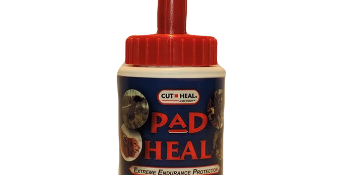 Pad heal for dogs feet
