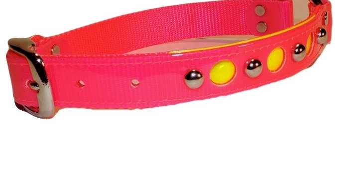 Pink 2 ply 1 inch wide fancy center ring dayglo with nylon backing  dog collar with nickle plated spots and reflective holes