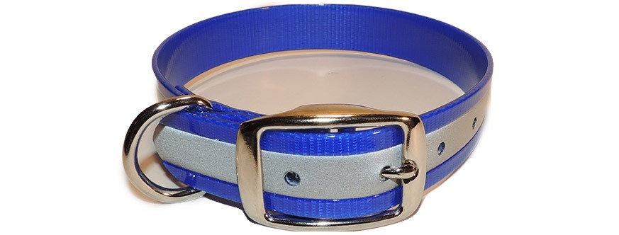 blue reflective dayglo dog collar with Dee ring.