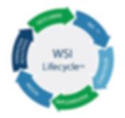 Metodología Lifecycle propia de WSI
