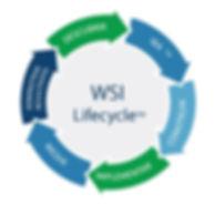 Metodología WSI/Lifecycle