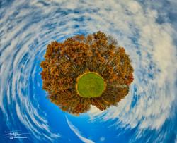 My Mini Autumn World