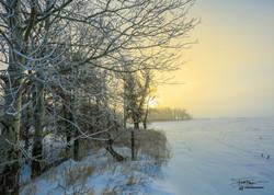 Iowa Winter Morning