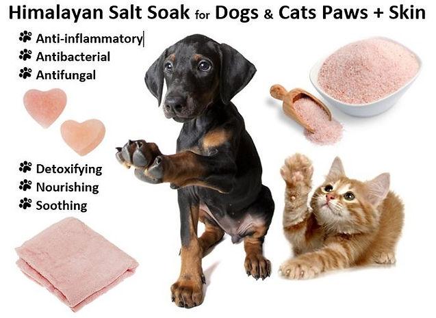 Himalayan-Salt-Soak-Dogs-Cats-Paws-Skin.JPG