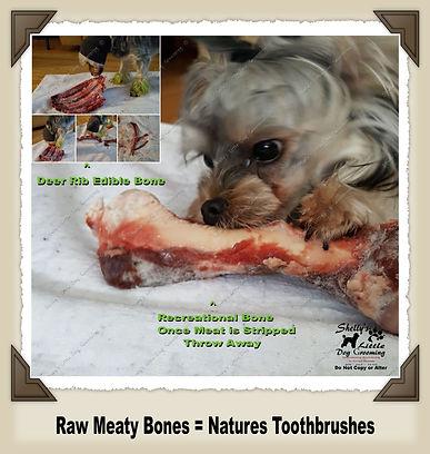 Meaty Bones.jpg