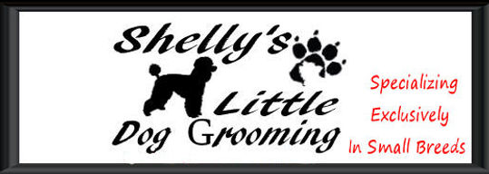 Services / Prices | Shelly's Little Dog Grooming/Regina sk