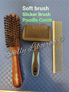 Soft Brush Slicker Brush Poodle Comb (3)