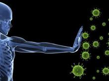 L'efficienza del Sistema Immunitario: come ottenerla?