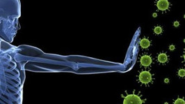 L'importanza dell'efficienza del Sistema Immunitario e come ottenerla.