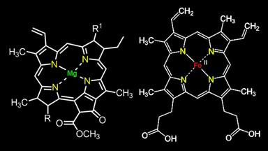 Riflessioni sulla chimica