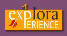 tasto-experience.jpg