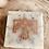 Thumbnail: Coffee scrub Thunderbird Soap Bar