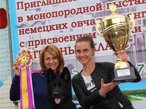 Кубок «Гран-При»