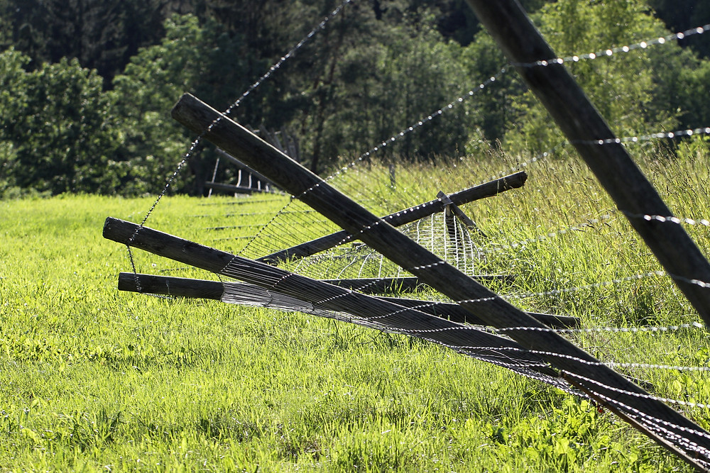 damaged fence line requiring maintenance and repair work