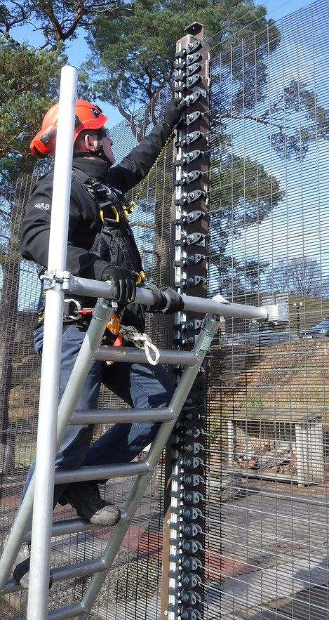 Maintenance on fence using QAB ladder an