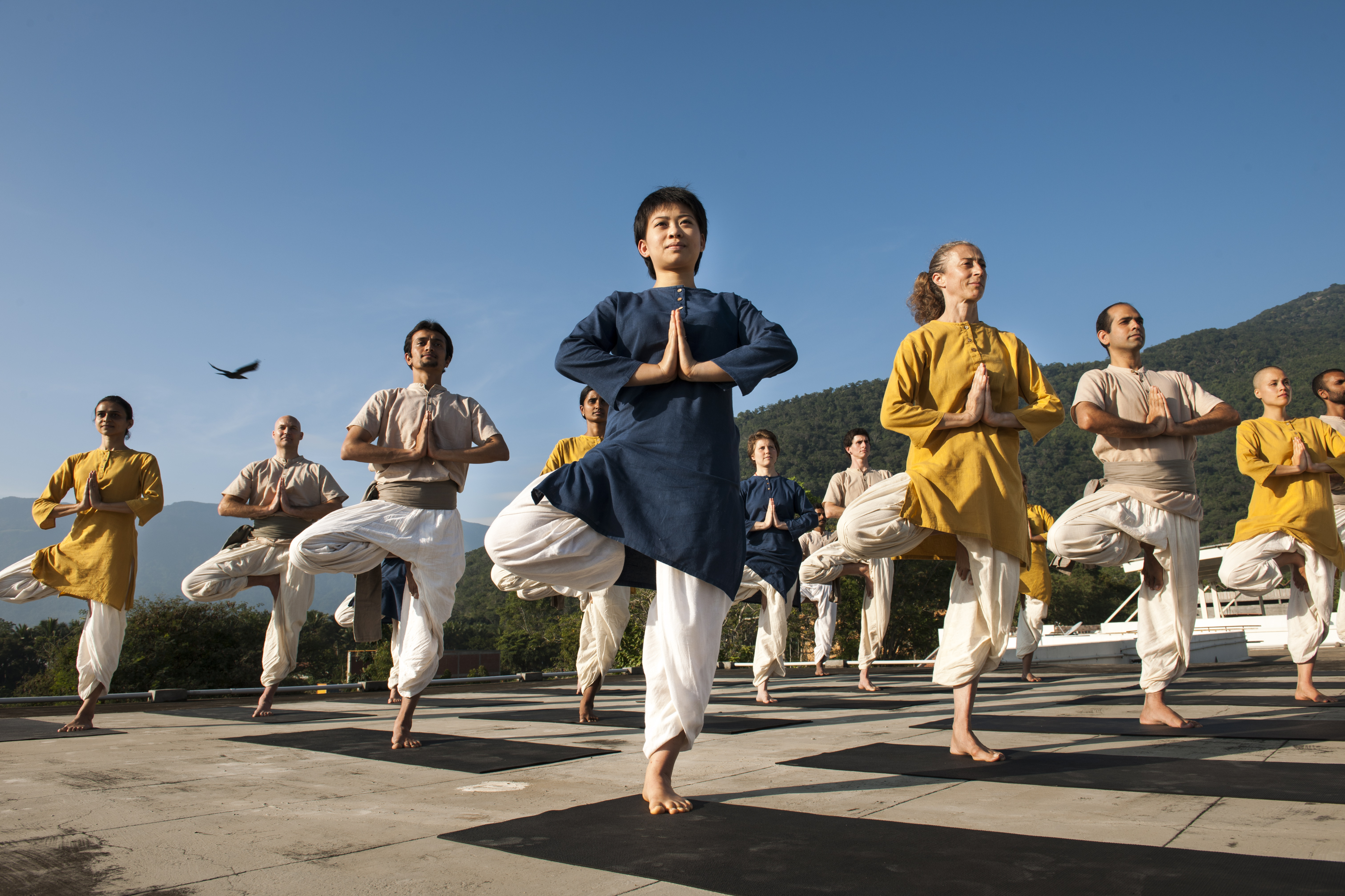Yogasanas-standing