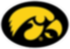 Iowa_Hawkeyes_logo.svg.png