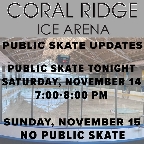 Public Skate.jpg