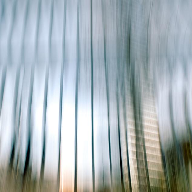 City Vibrations