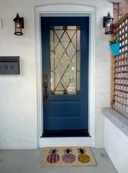 Traditional steel entry single door