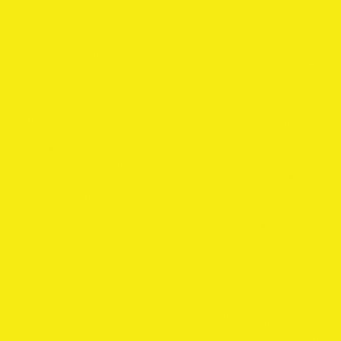 Sunflower (N)_SS042.jpg