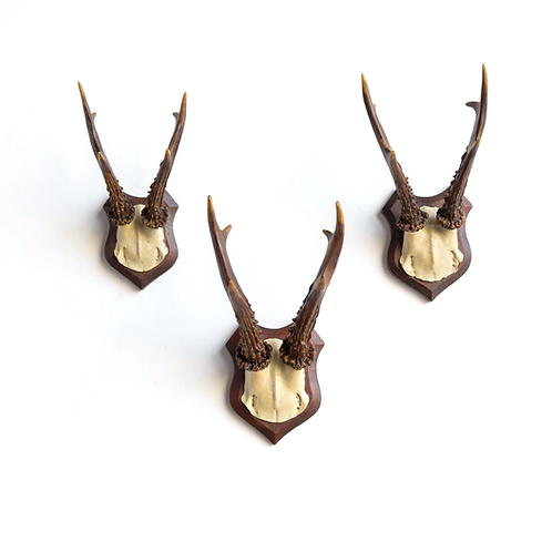 Faux Deer Antlers, Set of 3