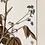 Thumbnail: Botany Study Blue 3