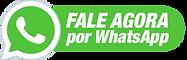 ZAP-TURBO-MARKETING-2-Robô-de-Whatsapp-D