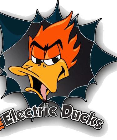 ELECTRIC DUCKS
