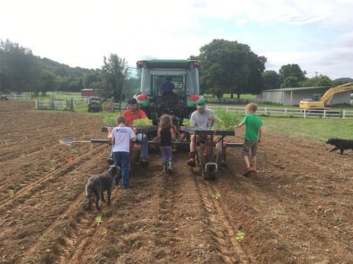 THS Farm Planting Hemp