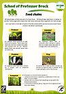KS2 Food chains BT version.jpg