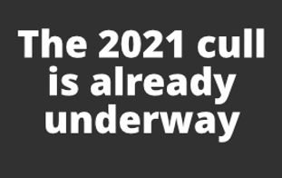 Cull Text  The 2021 cull is already underway .jpg