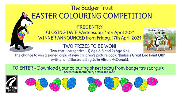 Badger Trust Competition Poster for Twit