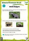 KS2 World badgers.jpg