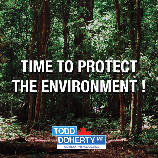 Time to Protect the Environment !