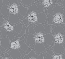 Grey Anemones3