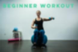 Beginner Workout Video