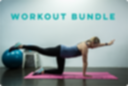 Workout Bundle Videos