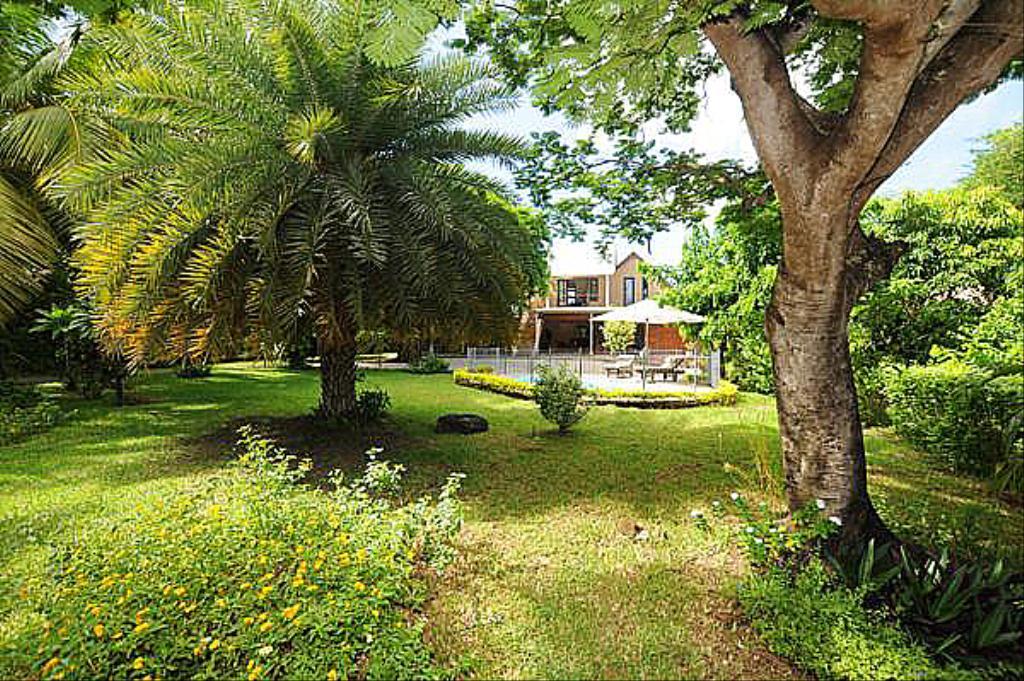jardin 2_1.jpg