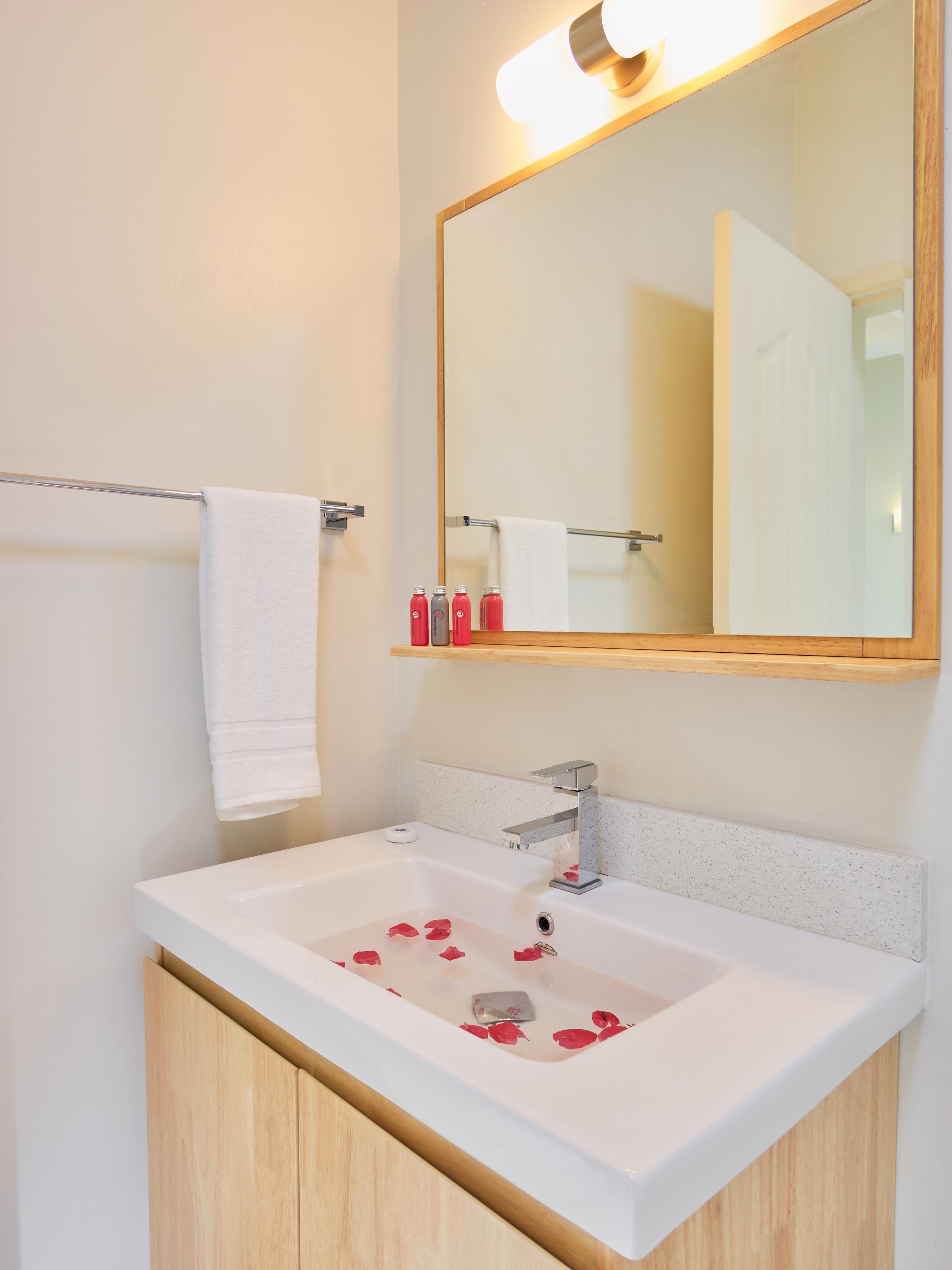 LD Penthouse Bathroom (2)
